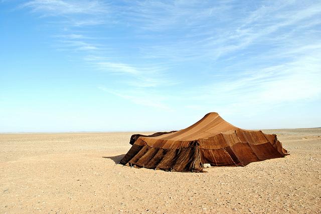 Berberiteltta erämaassa. Kuva: Flickr (Creative commons).