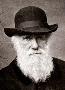 Charles Darwin v. 1881. Kuva: Wikipedia.